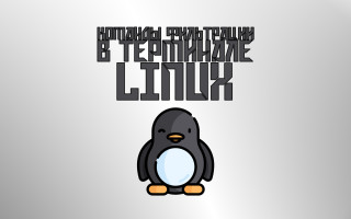 Команды фильтрации в Linux. head, tail, sort, nl, wc, cut, sed, uniq, tac