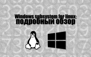 Windows subsystem for linux (WSL) — подробный обзор