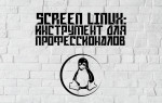 Screen Linux: инструмент для профессионалов