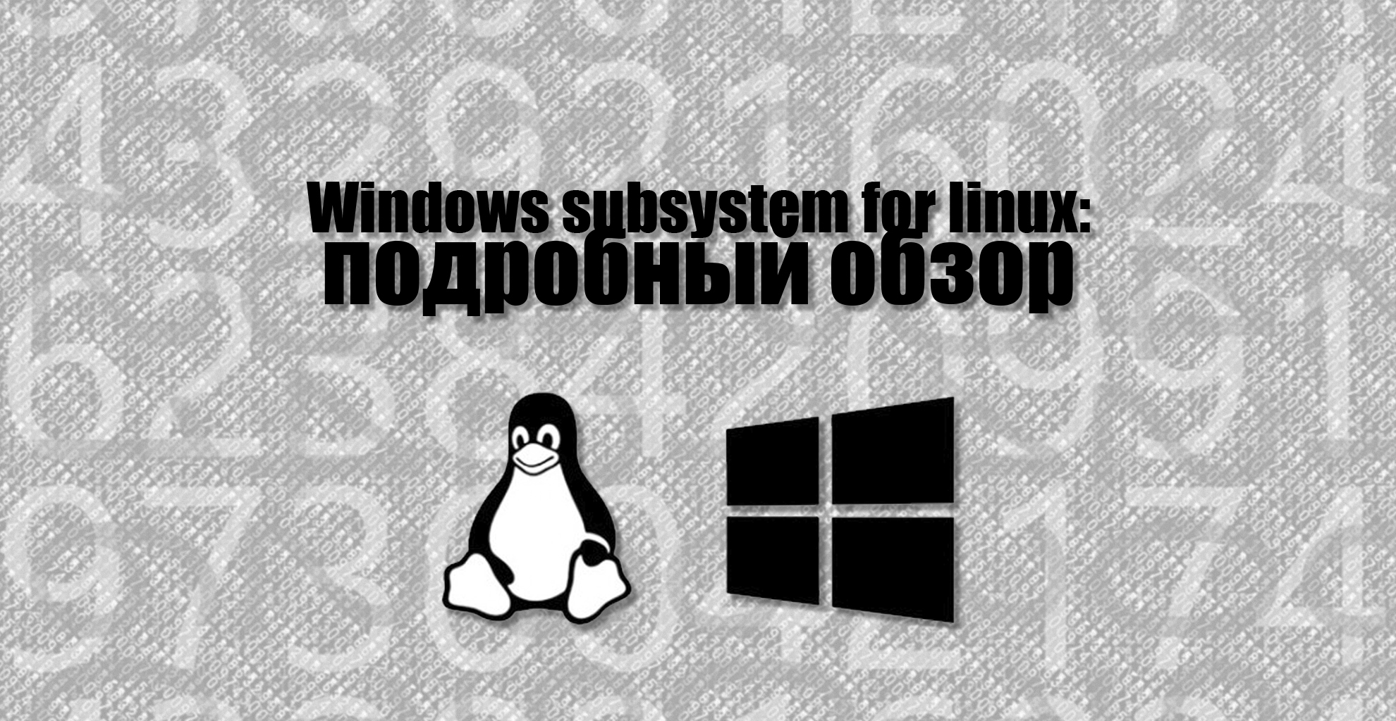 Windows subsystem for linux (WSL) - подробный обзор